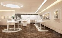 【German】high-end luxury diamond jewelry store design